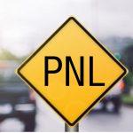 Logotipo de grupo de PNL Programacion Neurolinguistica